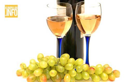 Nikmati Segelas Wine Sehari