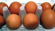 Berapa Lama Makanan dapat Disimpan di Kulkas?